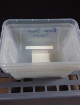 Plastic Storage Containers Clear